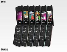 Unlocked Cell phone Dual Sim BLU Diva Flex 2.4 - GSM Quad band 2G Flip phone