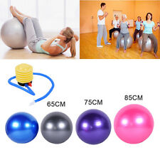 65 75 85CM Yoga Ball Home Gym Exercise Pilates Equipment Fitness Ball w/Air Pump