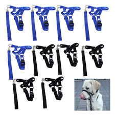 Dog Halter Pet Head Collar Gentle Leader Training Straps No Pull Harness S-2XL