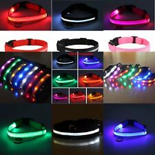 For Dog Pet LED Light Up Safety Collar RECHARGEABLE USB Night Bright Flashing