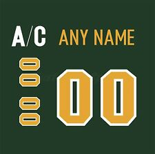 Finland Ilves Tampere Green Jersey Customized Number Kit un-stitched
