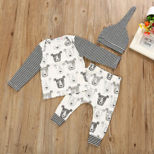 Toddler Infant Baby Boys Animation Long Sleeve Hoodie Top Sweatsuit Pants Outfit