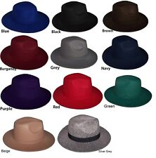 Felt Hats Fedora Trilby Hats Men Hats  Women Hats 10 Color Choice  (Felthat1 ^*)