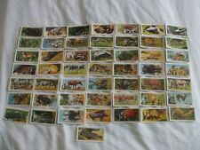 BROOKE BOND TEA CARDS:AFRICAN WILD LIFE 1962:BUY INDIVIDUALLY NO's 1 TO 25