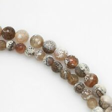 "8"" 8mm 10mm Gray  Brown Fire Agate Gemstone Round Beads Faceted Strands"