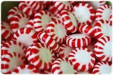 Peppermint Twist Fragrance Oil Candle/Soap Making Supplies ***Free Shipping***