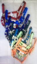 Hamilton equine/horse halter-various sizes and colors