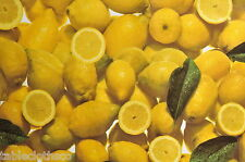 LEMONS VINYL PVC OILCLOTH WIPE CLEAN TABLECLOTH CO click for sizes