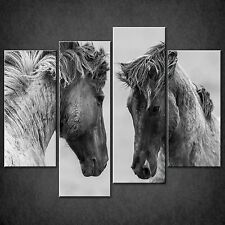 FIGHTING HORSES BLACK AND WHITE CASCADE CANVAS PRINT READY TO HANG