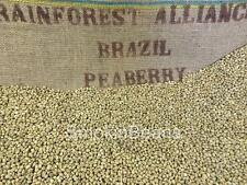 1-100 pounds BRAZIL PEABERRY RARE CONCENTRATED FLAVOR BULK GREEN COFFEE BEANS