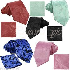New Men's Self tie Neck tie AND Hanky set Paisley Wedding Party Prom Formal