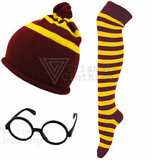 Harry Potter Style Gryffindor House Colours Hat Glasses Socks Unisex Kids Movie