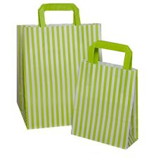 Green Candy Stripe Flat Handle Carrier Bags ~ Birthday Party Paper Gift Bag *