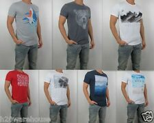 NWT HOLLISTER By Abercrombie Surf Shark Bear Graphic MenT Shirt Tee All Size