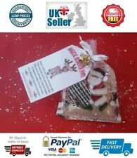 Magical Reindeer Food Dust Rudolf Santa Sack Sleigh Jingle Bells Christmas Eve