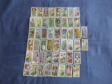 """BROOKE BOND CARDS:WILD FLOWERS SERIES 2:""""ISSUED BY"""":BUY INDIVIDUALLY NO's 1-50"""
