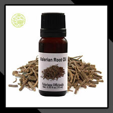 Valerian Root Oil Pure and Natural Essential Oil