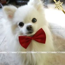 Pet Puppy Dog Cat Handsome Adjustable Necktie Collar Bow Tie