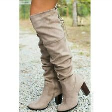 Zinc-01 Taupe Suede Over The Knee High Boots / Qupid