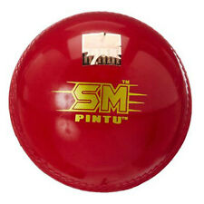 SM SYNTHETIC CRICKET BALL,PACK OF 12 BALLS