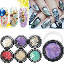 New Colorful Crushed Shell for False Acrylic Gel Tip Nail Art Decoration UK