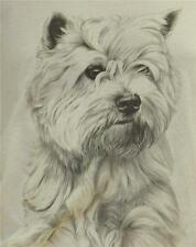 West Highland Terrier by Mike Sibley Design - Gildan T Shirt - Various Colours