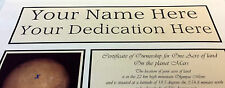 Acre of land on Mars - eBay's Best - Fully Personalised -Any Name & Dedication