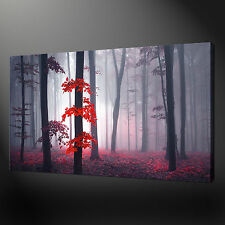 AUTUMN RED MISTY FOREST TREES MODERN WALL ART CANVAS PRINT PICTURE READY TO HANG