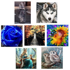 5D Frameless Pictures Art Embroidery Diamond DIY Painting Crafts Home Decor