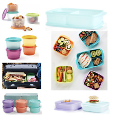 Tupperware Snack Cups / Squares / Lunch Box ~ Pick Your Design ~ School ~ Work