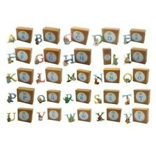 OFFICIAL LICENSED BEATRIX POTTER PETER RABBIT BOXED ACRYLIC ALPHABET LETTERS