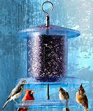 All Weather Bird Feeder Weatherproof Seed Feeder NEW