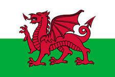 Wales Flag Made in the USA Outdoor Heavy Duty Nylon Flag