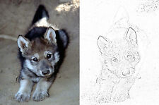 Pre-lined Velour Projects, Wildlife & Pets, 35x50cm, sand & grey, Vic Bearcroft