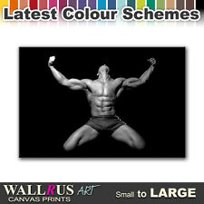 Male NUDES EROTIC  Canvas Print Framed Photo Picture Wall Artwork WA