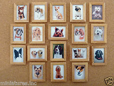 ONE DOLLS HOUSE MINIATURE DOG PICTURE Choice of Breed WOOD FRAME Handmade 1:12th