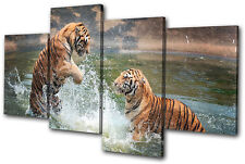 Animals Tigers Playing MULTI CANVAS WALL ART Picture Print VA