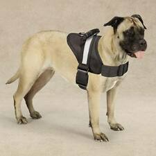 No Pull Padded Handle Harnesses for Dogs - Dog Anti Pull Harness Walk Train Pet