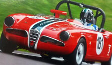 Alfa Romeo : Spider race car