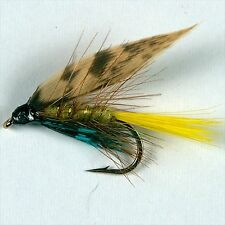 12 INVICTA CADDIS Wet Fly Fishing Trout Flies various options by Dragonflies