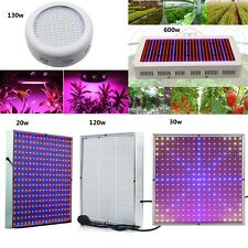 10W 20W 30W 130W 600W LED Grow light Garden Hydroponic Lamp for flowering plants
