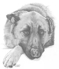 GERMAN SHEPHERD (2) dog LE art drawing prints  2 sizes A4/A3 & Card Available