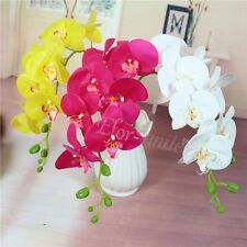Artificial Silk Flower Butterfly Orchid Home Wedding Decor Phalaenopsis Bouquet