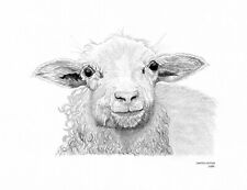 SHEEP Limited Edition art drawing print 2 sizes A4/A3 & card available