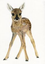 FAWN Baby Roe Deer Nursery Ltd Edit art drawing prints 2 sizes A4/A3 /Note Card