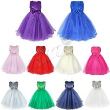 Flower Girl Princess Dress Kid Party Pageant Wedding Bridesmaid Tutu Tulle Dress