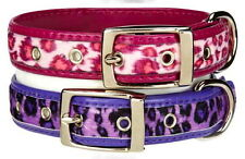 Dog Collar - Vibrant Leopard - East Side Collection - Choose Size & Color