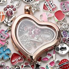 Living Memory For Floating Charms Glass Heart Locket Pendant Necklace Gift New