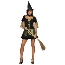 Wicked Witch of the West Wizard of Oz Plus Size Adult Sexy Halloween Costume
