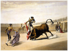 491. Bullfight Painting Decoration Art POSTER.Graphics to decorate home office.